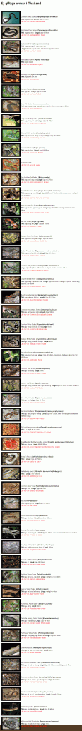 A photo collection of 50 of Thailand common snakes