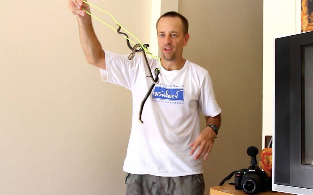 Catching monocled cobras with a bent up hanger.
