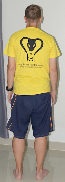 """Vern wearing a Large size - it is too small for me. I'm 5'11"""" and about 180 lbs (80kg)."""