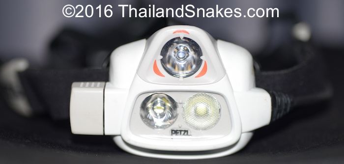 Petzl Nao 2 headlamp for herping snakes in Thailand.