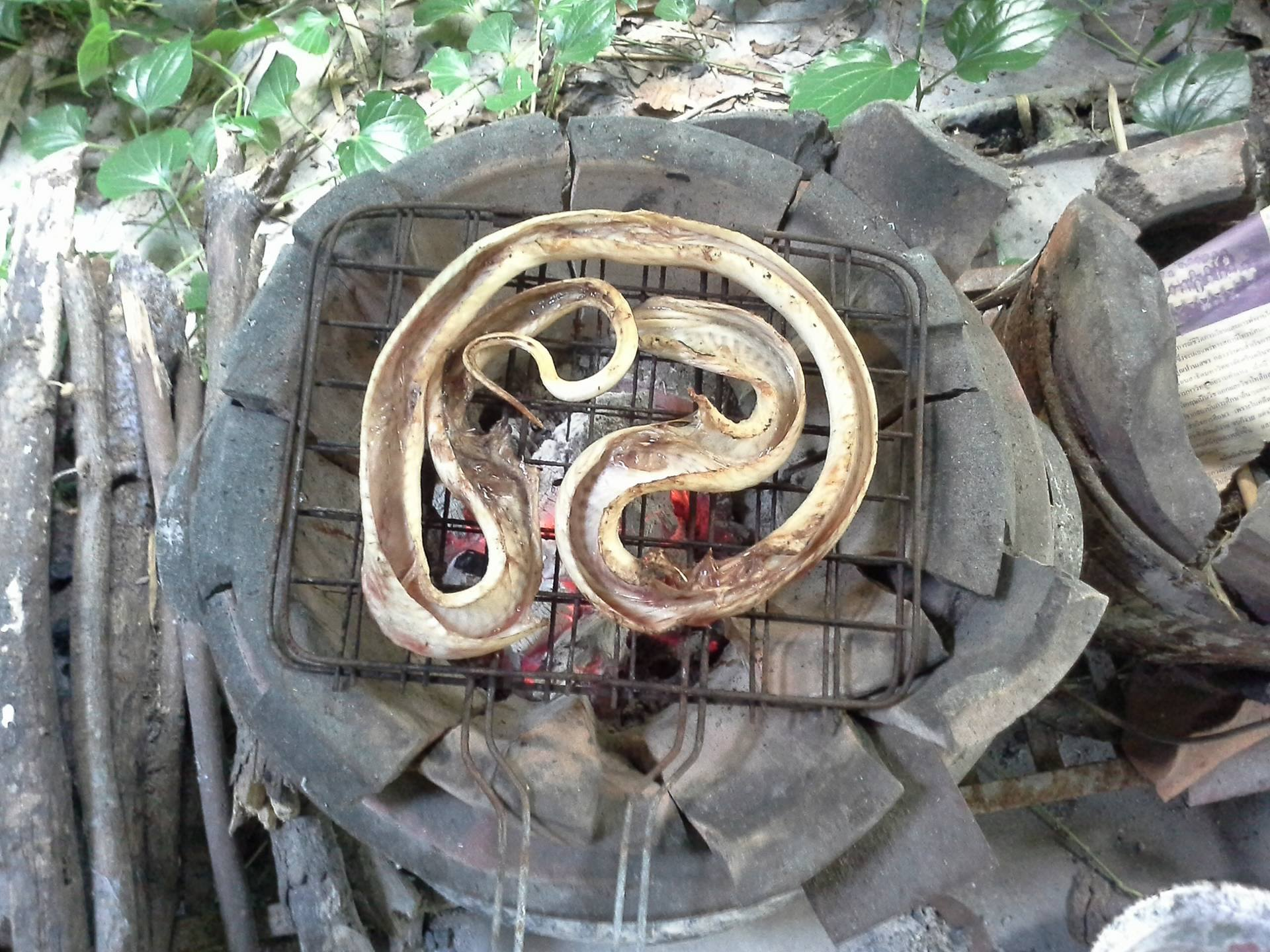 Skinned Cobra on the grill.